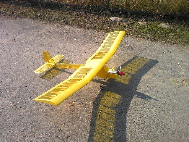 ラジコン飛行機 fly high: モス...