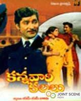 Kannavaari Kalalu movie
