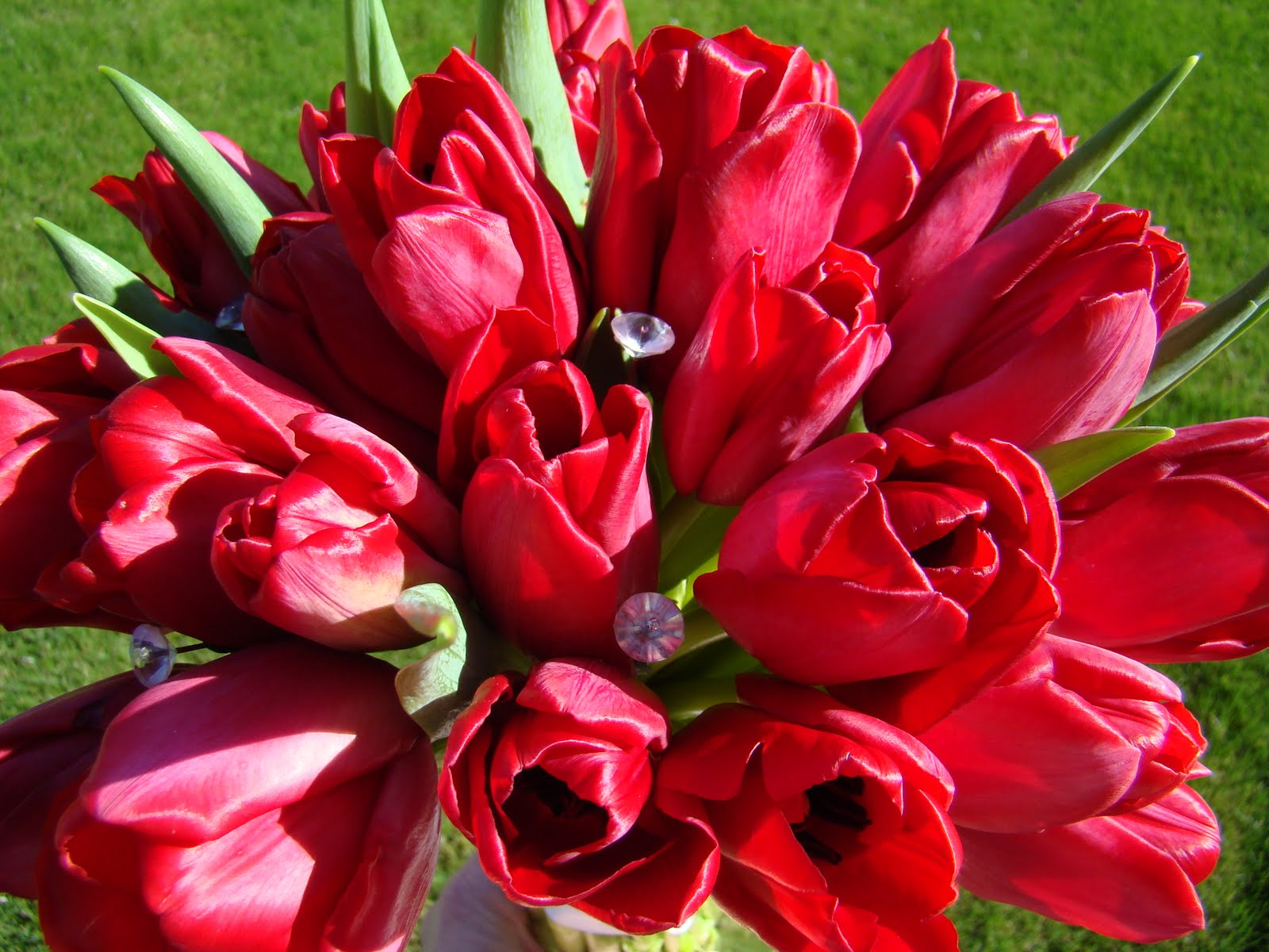 Bloomingmill: Red Tulips Bridal Bouquet