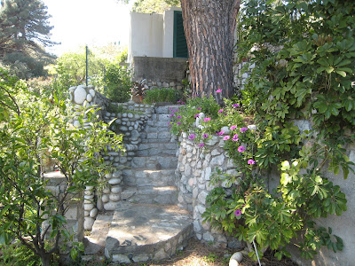 Fiori del mio giardino angolo di paradiso for Angolo giardino