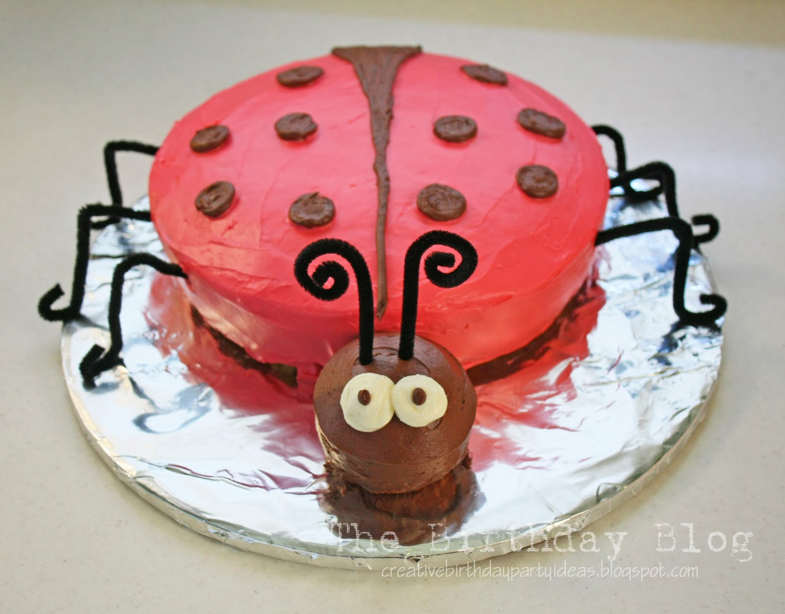 Lady Bug Cake Stacy Risenmay