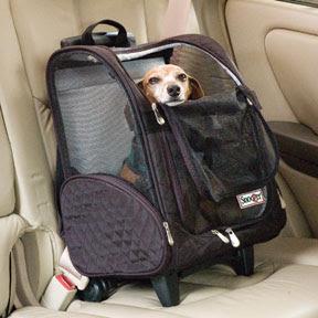 Accesorios Para Perros Transport 237 N Multiuso Para Mascotas