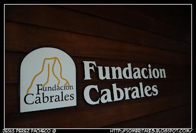 Cueva exposición queso cabrales en Arenas de Cabrales de Asturias