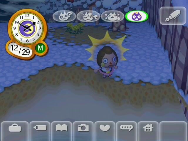 Animal Crossing City Folk: Whisp's Wish
