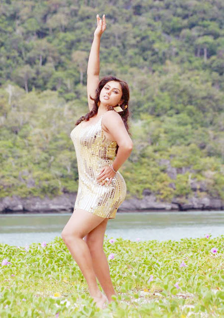 Download Cute Namitha Wallpapers  Entertainment -5829