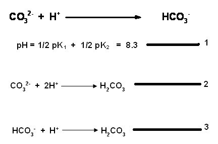General Chemistry Lab: Displacement titrations (Key words
