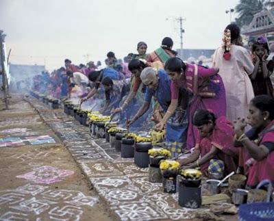 Thai Pongal Festival 2014