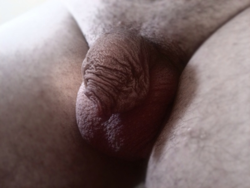 8 inches cock my wife with huge boobs milks my big cock dry