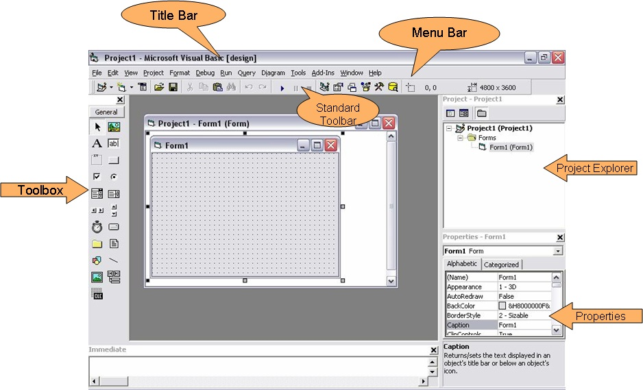 Visual Basic Project Designing: Introduction to visual basic