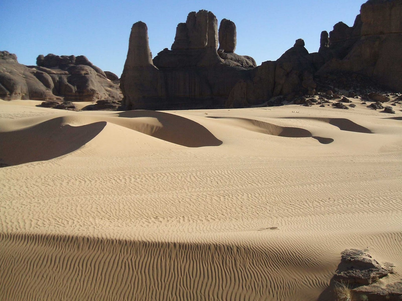 La maravillosa vida de sara alondra quevedo cuevas - 3 part 7
