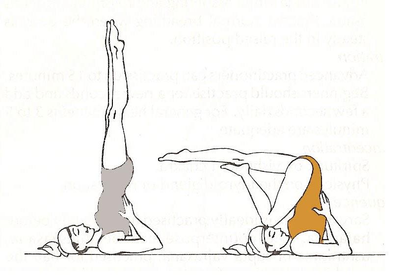 videos de clases de yoga para adelgazar