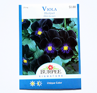 Viola Black Jack Burpee Signature Series seeds