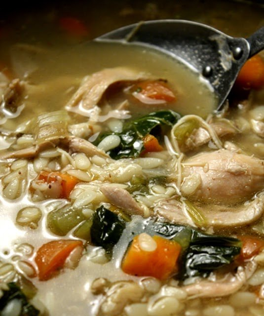 Chicken Soup Dog Food Coupons