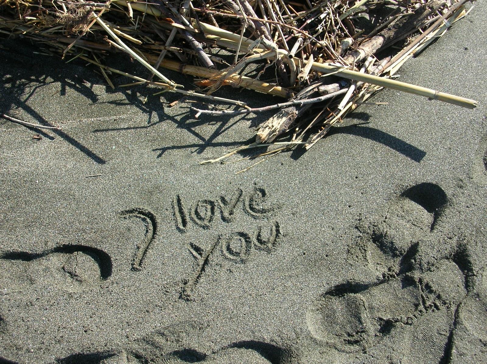 Amor Escrito En Arena: Caracteristica Roma: Mi Playa