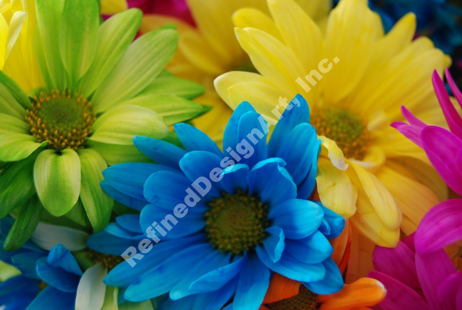 RefinedDesignArt Flowers Multi Colored