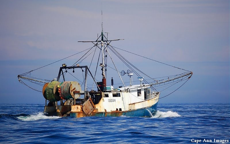 "Fishing Vessel ""Horizon"" at Sea !"