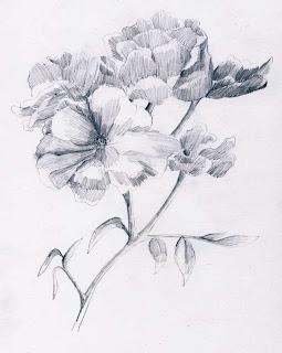 Arsiran Dan Tekniknya Harumnya Bunga Mawar