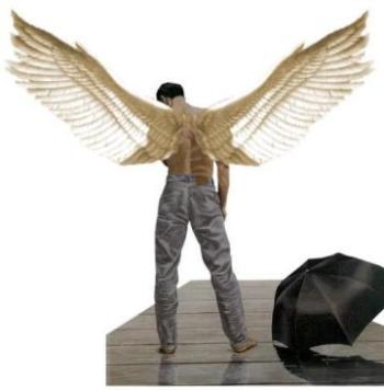 [anjo_perdendo_as_asas.jpg]
