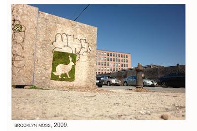 Fiore Fresco Climbing The Walls