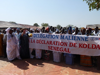 Members of the Malian delegation at the declaration.