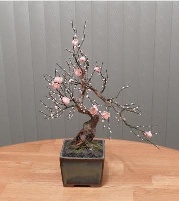 Zokei Bonsai Amanda S Blog