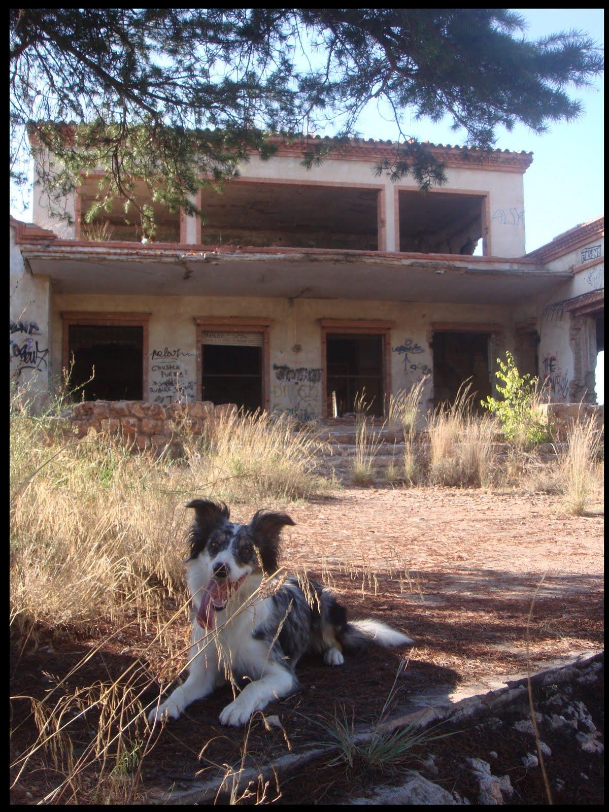 Dakota Y La Casa Encantada