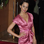 Stars at Big Pictures Success Bash