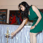Sridevi at Art Event Exclusive Unseen Photo Gallery