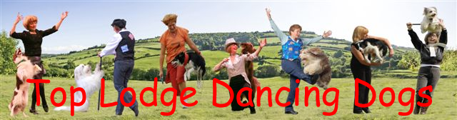 Top Lodge Dancing Dogs