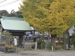 鎌倉・青蓮寺