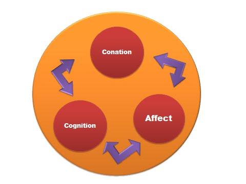 3 component of attitudes