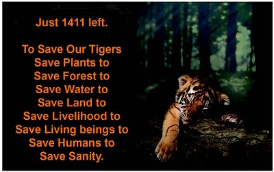 essay on save the tiger india