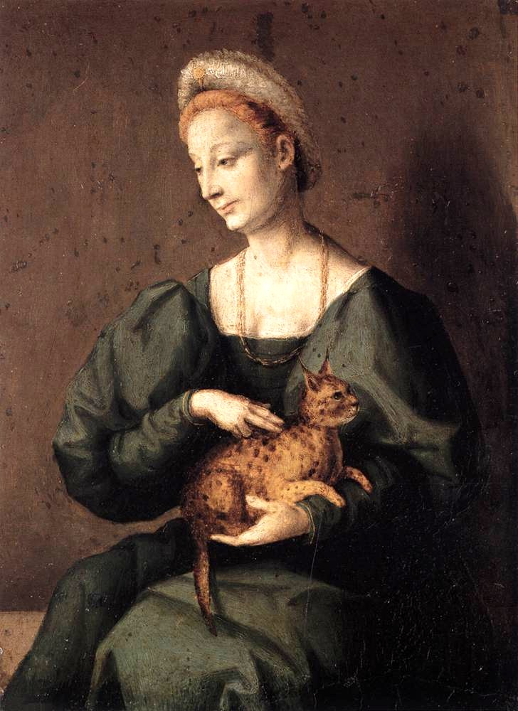 Cat With Woman