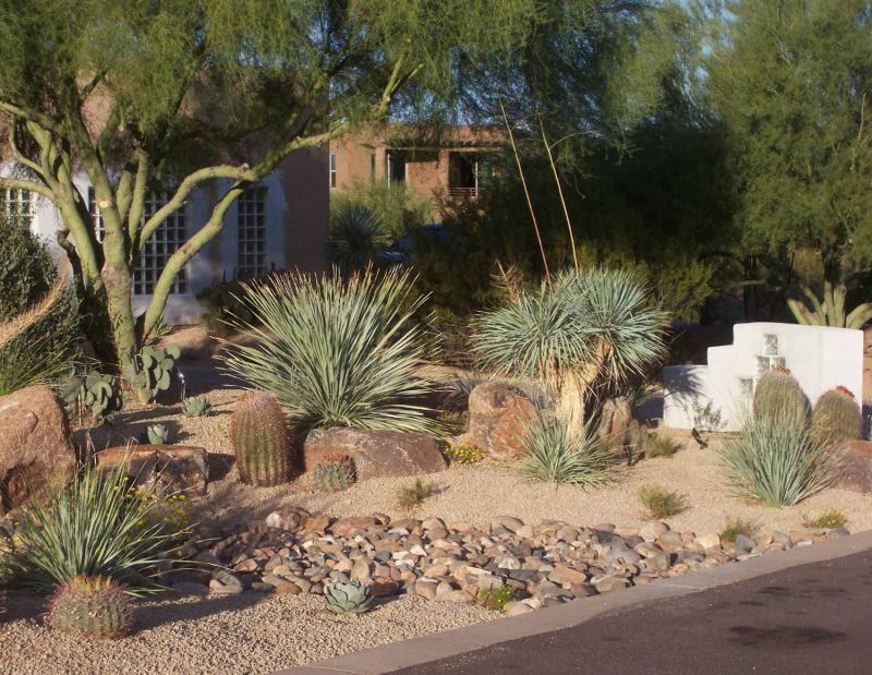 BACKYARD LANDSCAPING IDEAS | LANDSCAPING IDEAS | BACK YARD ... on Desert Landscape Ideas For Backyards id=39678