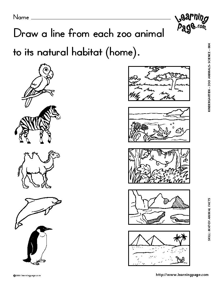 worksheet Free Printable Worksheets On Animal Habitats habitat worksheet free worksheets library download and print l i mooi keow d20102042511 nim ls less live
