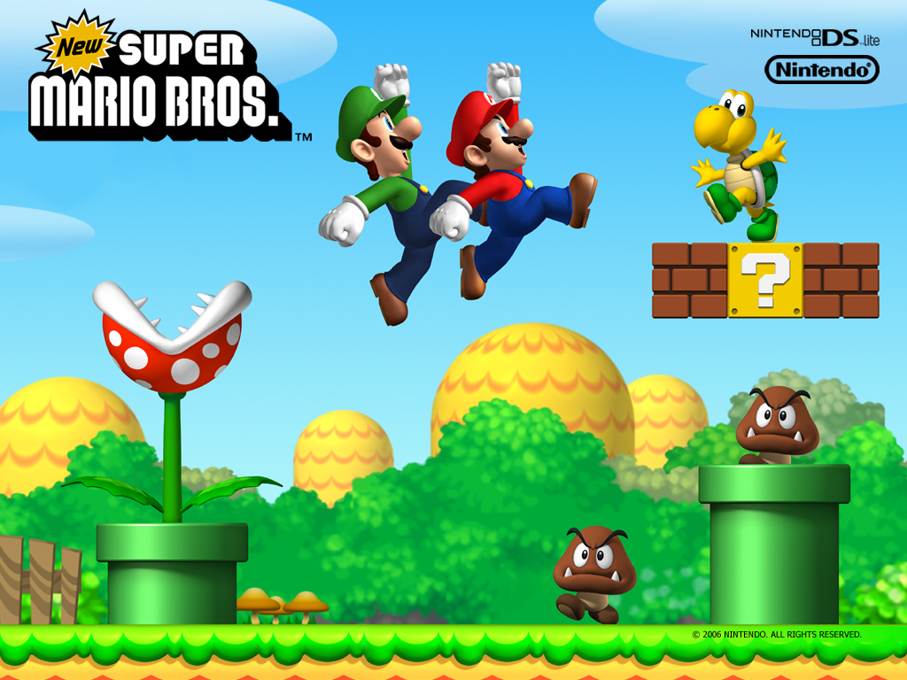 Super mario brothers 2 ds game