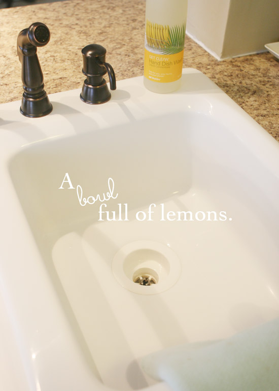 Cleaning Out The Kitchen Sink A Bowl Full Of Lemons