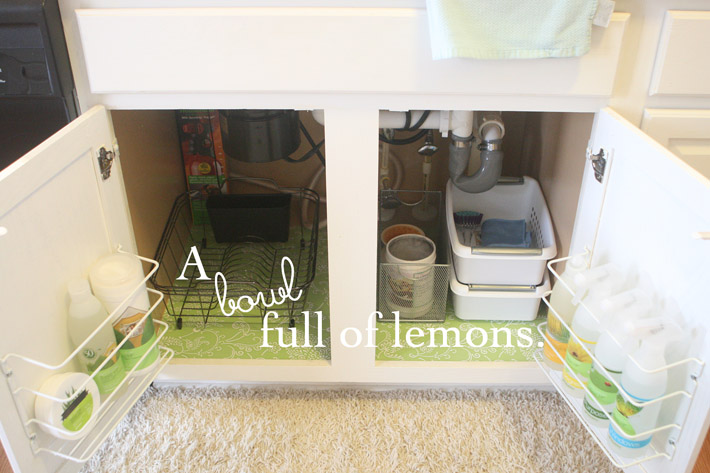 organize under the kitchen sink organizing the kitchen sink a bowl of lemons 7218