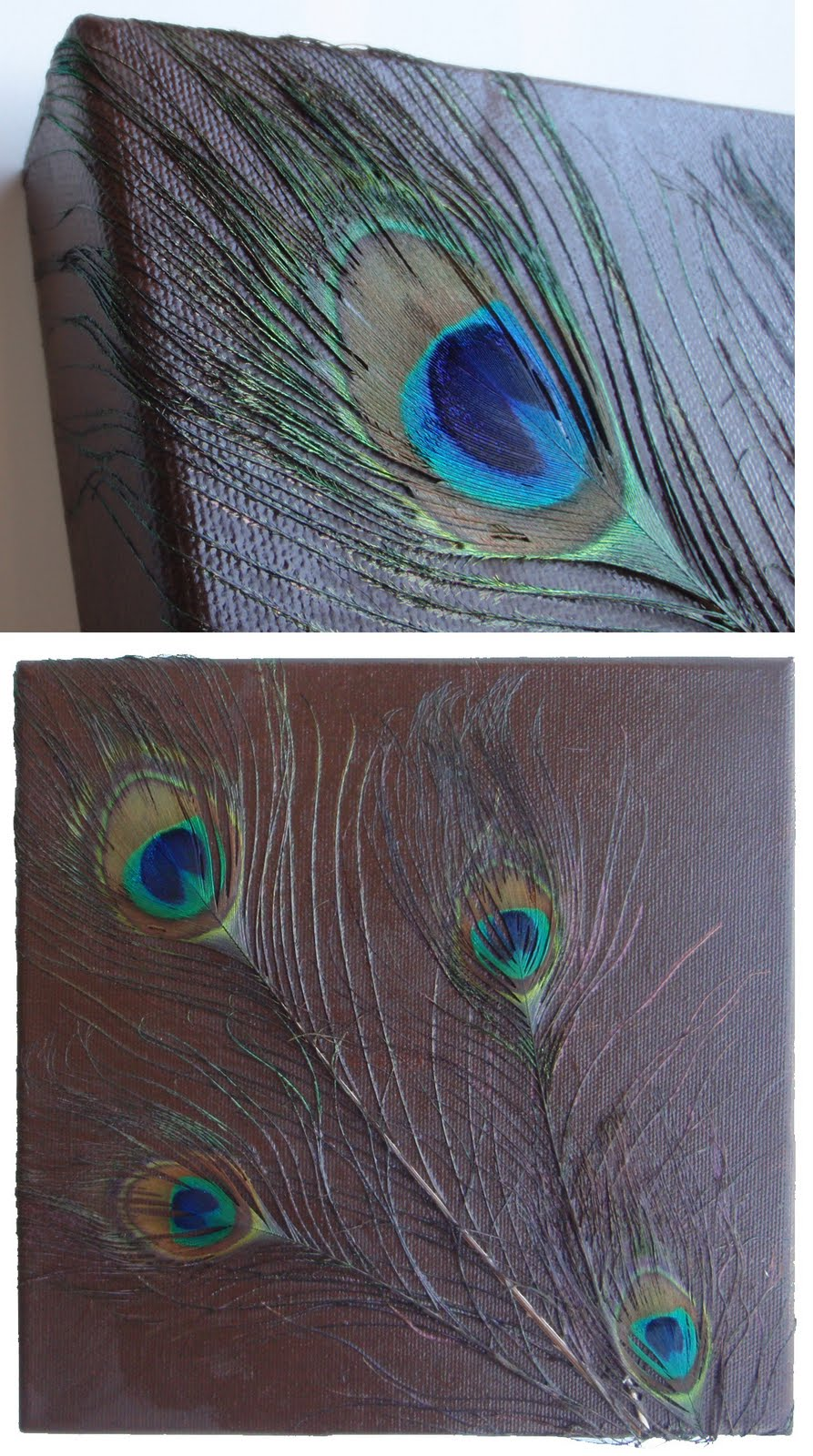 Peacock feather paintings - photo#30