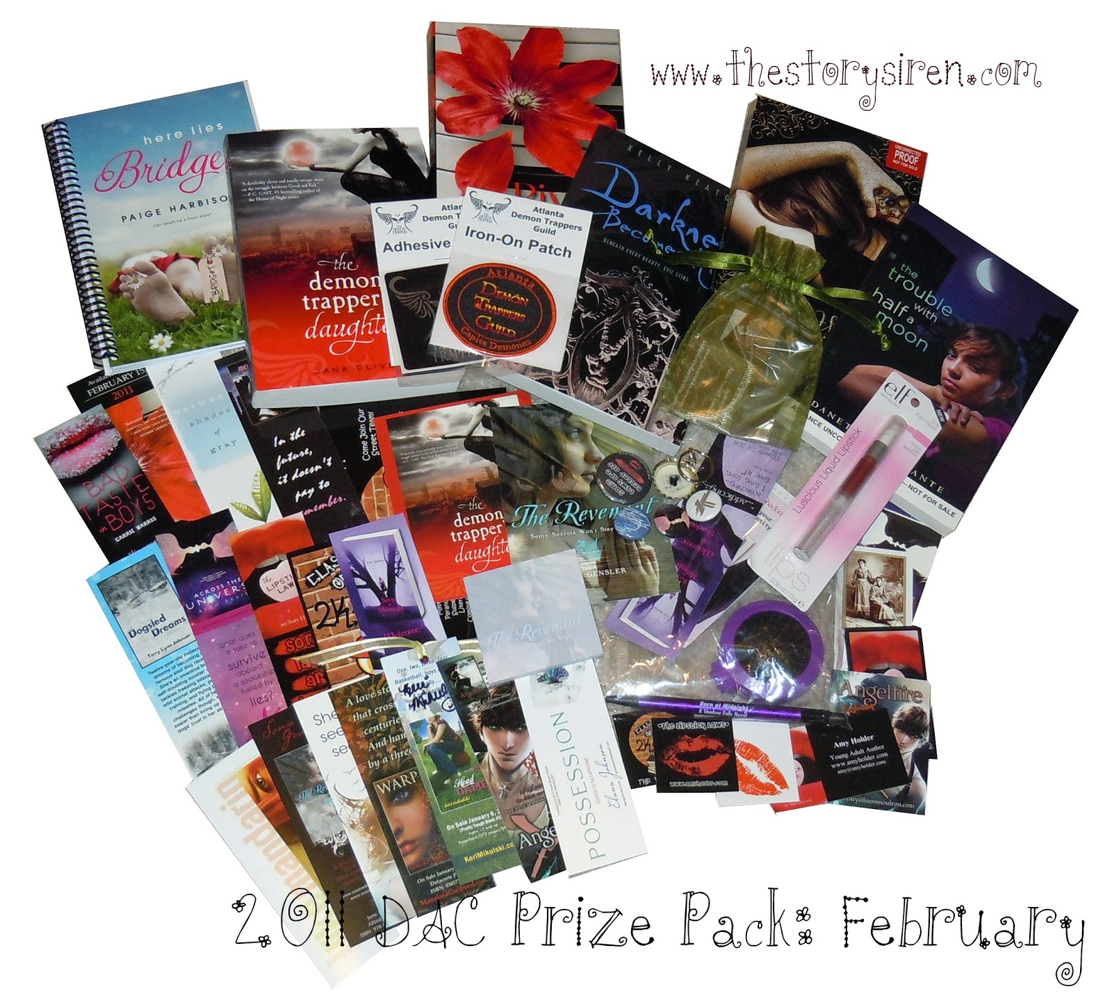 2011 Debut Author Challenge: February
