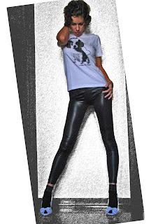 http://s-fashion-avenue.blogspot.it/2010/11/black-white-and-pet.html