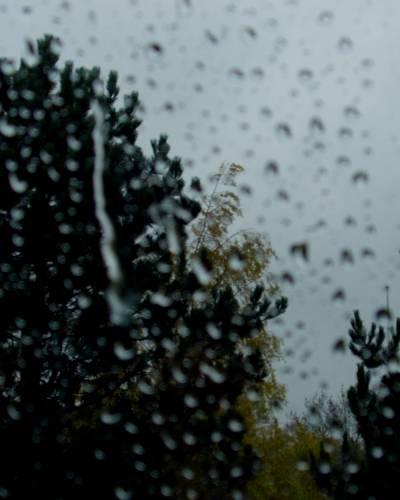 Regndråber på vindue