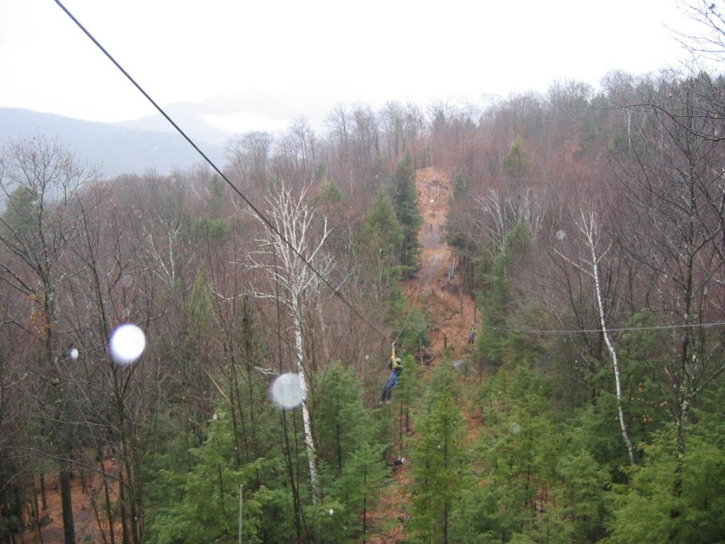 Zip Line In Lincoln Nh Download Free Software Coursesbackup