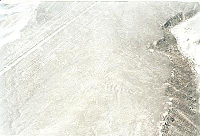Colibri la liniile Nazca, Peru