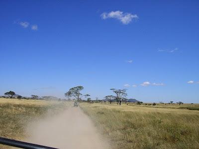 Imagini Kenya: safari in savana