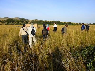 Safari Kenya: rezervatia Masai Mara