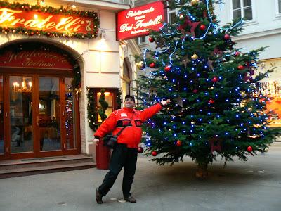 Obiective turistice Austria: Pom de Craciun Viena