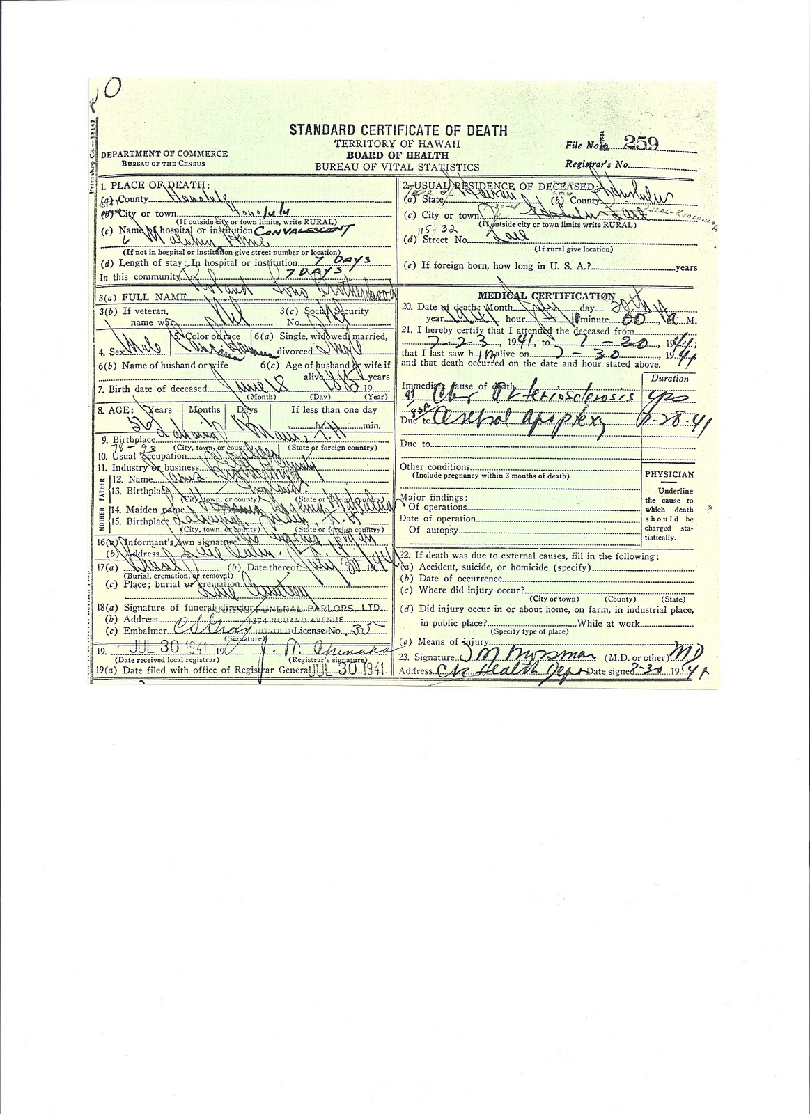 Certificate Honolulu Tutore