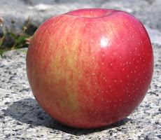 A round red apple