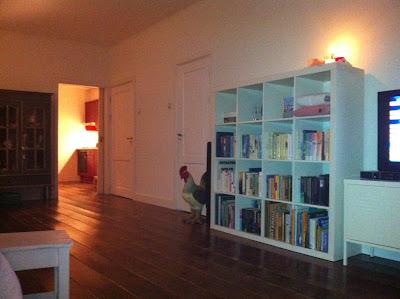 Home Kreatief - bouwen aan een warm nest: juni 2010